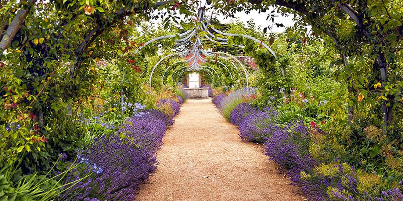 De grootste open tuinen site van nederland for Mooie tuinen afbeeldingen