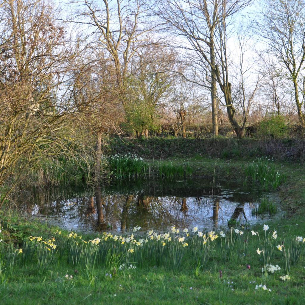 ecologische cottage tuin bezoekmijntuin
