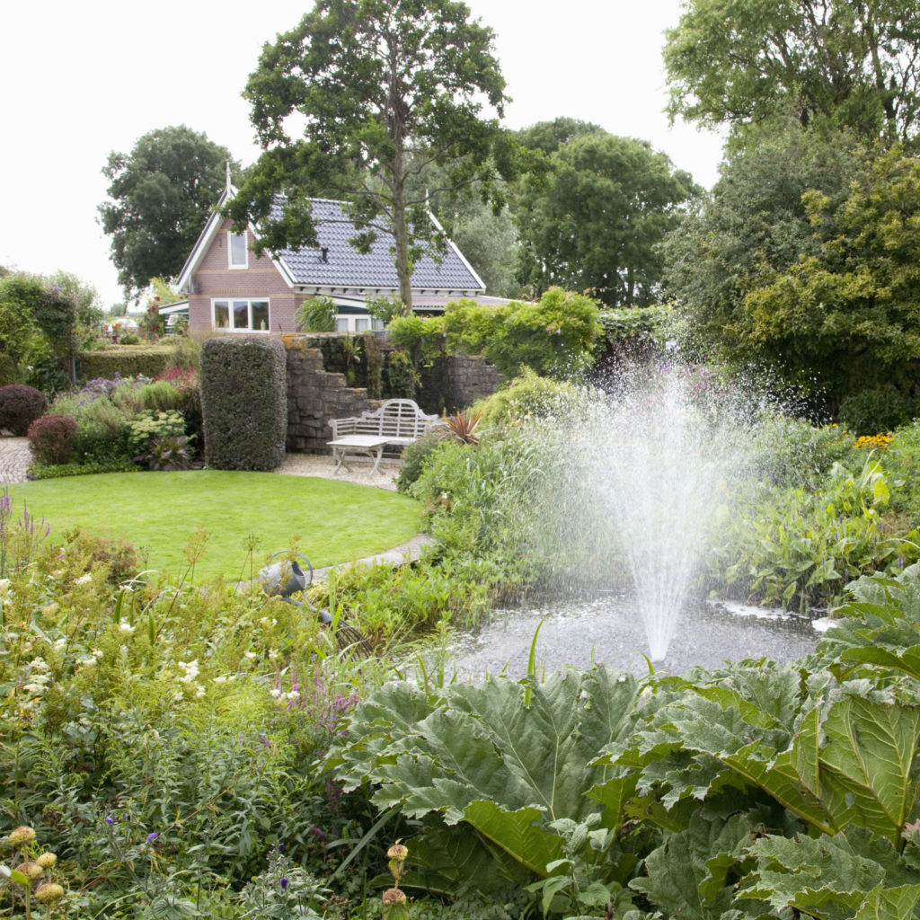 Versicolor tuin bezoekmijntuin - Alle tuin ...