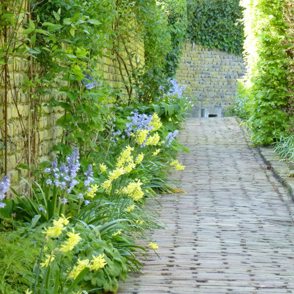 Tuin van geke rook bezoekmijntuin - Alle tuin ...