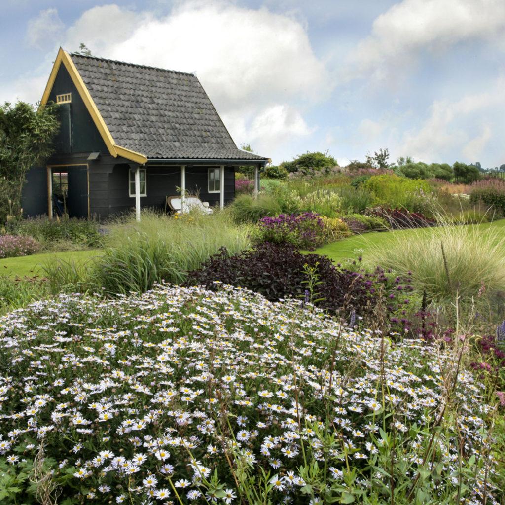 Tuin aan het weeltje bezoekmijntuin - Alle tuin ...